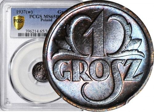 1 grosz 1937, menniczy, kolor BN