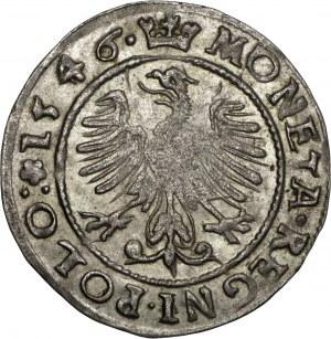Zygmunt I Stary, grosz 1546, Kraków, ładnie zachowane rozetki po obu stronach korony, herb Leliwa