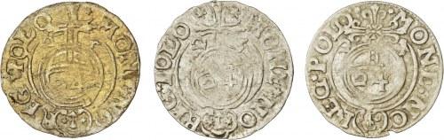 Zygmunt III Waza, 3 sztuki półtorak Bydgoszcz