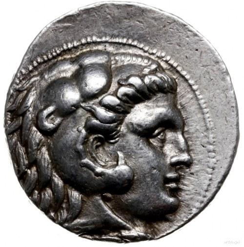 tetradrachma, Antiochia ad Orontem; Aw: Głowa Heraklesa...