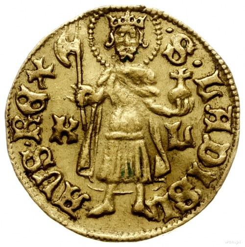 goldgulden bez daty (1436-1437), Krzemnica, mincerz Nof...