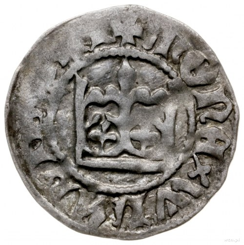 półgrosz koronny z lat 1431-1434; bez znaku pod koroną,...