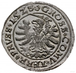 grosz 1528, Toruń; miecz z prawej strony Orła, końcówki...