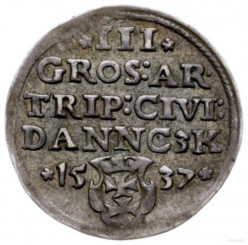 trojak 1537, Gdańsk; popiersie króla z węższą głową, ko...