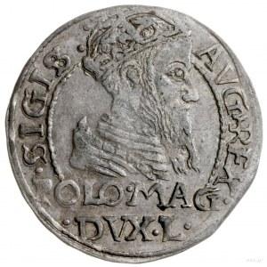 grosz na stopę polską, 1566, Tykocin; końcówki L/LI, od...