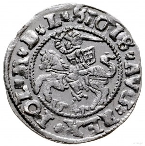 półgrosz 1545, Wilno; odmiana z tytulaturą króla po str...
