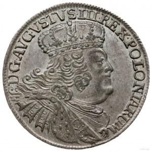ort 1755, Lipsk; masywne popiersie króla w szerokiej ko...