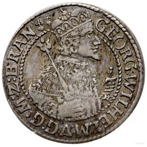ort 1624, Królewiec; popiersie księcia w płaszczu elekt...