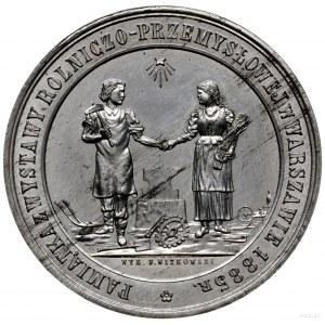 medal z 1885 r. autorstwa Franciszka Witkowskiego (wars...