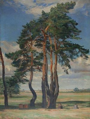 Kazimierz LASOCKI (1871-1952), Sosny mazowieckie, 1923