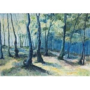 Elwira Kańczugowska, Niebieski las, 2009