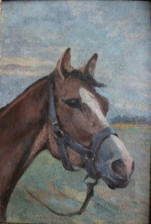 Zygmunt Rozwadowski (1870-1950), Głowa konia