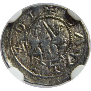 Władysław Wygnaniec, denar, NGC AU58