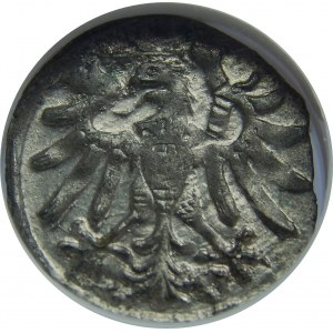 Zygmunt I Stary, Denar 1546, Gdańsk, NGC MS64