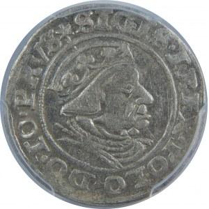 Zygmunt I Stary, Grosz 1539, Gdańsk, PCGS MS62