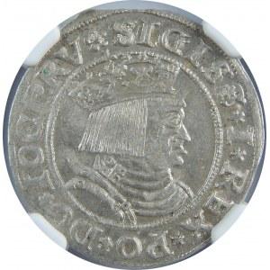 Zygmunt I Stary, Grosz 1531, Toruń, NGC MS62