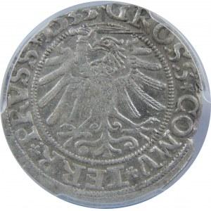 Zygmunt I Stary, Grosz 1533, Toruń, PCGS MS62