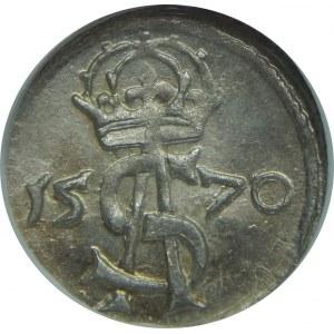 Zygmunt II August, Dwudenar 1570, Wilno, NGC MS64