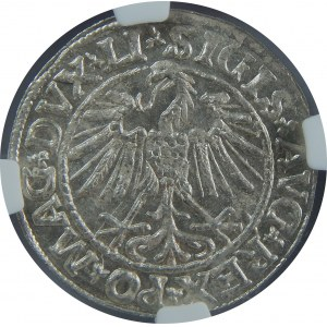Zygmunt II August, Półgrosz 1547, Wilno, NGC MS64