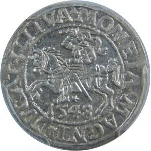 Zygmunt II August, Półgrosz 1548, Wilno, PCGS MS62