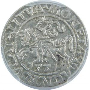 Zygmunt II August, Półgrosz 1551, Wilno, PCGS MS63