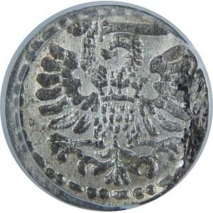 Zygmunt III Waza, Denar 1595, Gdańsk, PCGS MS63