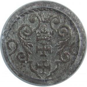 Zygmunt III Waza, Denar 1596-duża data, Gdańsk, PCGS MS64