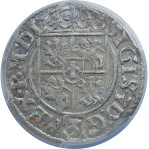Zygmunt III Waza, Półtorak 1619, Bydgoszcz, PCGS MS63