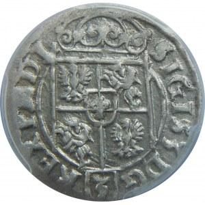 Zygmunt III Waza, Półtorak 1623, Bydgoszcz, PCGS MS62