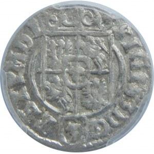 Zygmunt III Waza, Półtorak 1623, Bydgoszcz, PCGS MS63