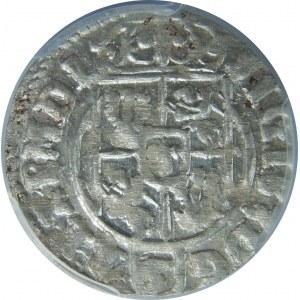 Zygmunt III Waza, Półtorak 1624, Bydgoszcz, PCGS MS63