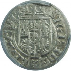 Zygmunt III Waza, Półtorak 1626, Bydgoszcz, PCGS MS63