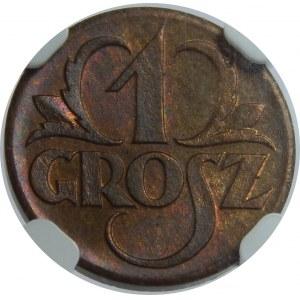 1 grosz 1923 NGC MS65 RB