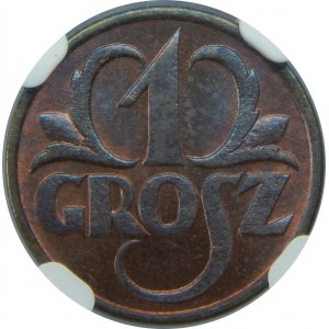 1 grosz 1931 NGC MS66 RB
