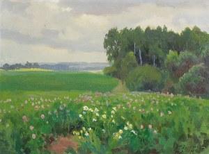 Teodor ZIOMEK (1874-1937), Kwiecista łąka, 1908