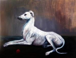 Kacper Piskorowski, Greyhound, 2017