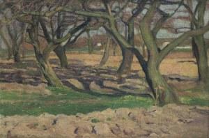 Ruszczyc Ferdynand, JABŁONIE W SADZIE, 1900