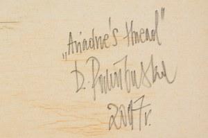 Dorota Pawiłowska (ur. 1987), Ariadne's thread, 2017