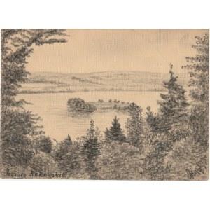 REKOWO (pow. bytowski). Widok na jezioro, rys. ołówkiem autorstwa M. ...