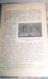 GRĄBCZEWSKI - WSPOMNIENIA MYŚLIWSKIE wyd. 1925r. ilustracje