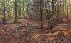 Jakub Podlodowski W lesie