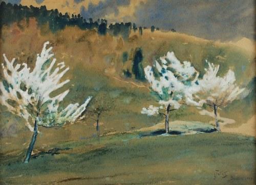 Julian FAŁAT (1853-1929), Wiosna w Bystrej, 1910