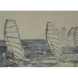 Grzegorz Śmigielski, Windsurfing