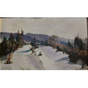 Georg Wichmann (1876-1944), Zima w górach