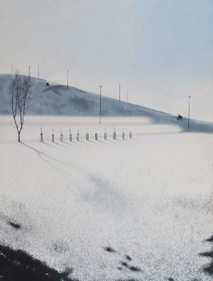 Maciej NAWROT (ur. 1986), Bez tytułu (Armatki), 2012