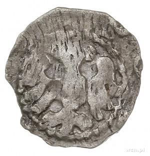 denar, Aw: Hełm z pięcioma piórami w pióropuszu, N [REG...