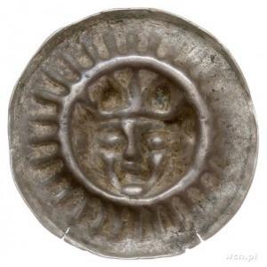 Gryfia, brakteat XIII-XIV w, Głowa w koronie na wprost,...