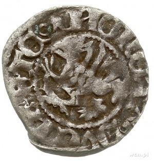 Szczecin, Otto II i Kazimierz VI 1413-1428, wit, Aw: Gr...
