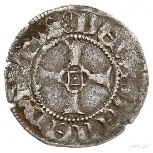 Ks. Wołogoskie, Barnim VII i Warcisław IX 1405-1451, wi...