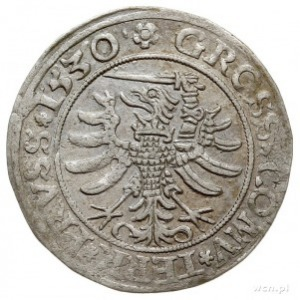 grosz pruski 1530, Toruń, PN.13-Dut.52